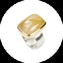 icon-1-Ring_ringleinshop